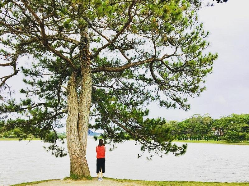 Ho Xuan Huong Da Lat 10 1