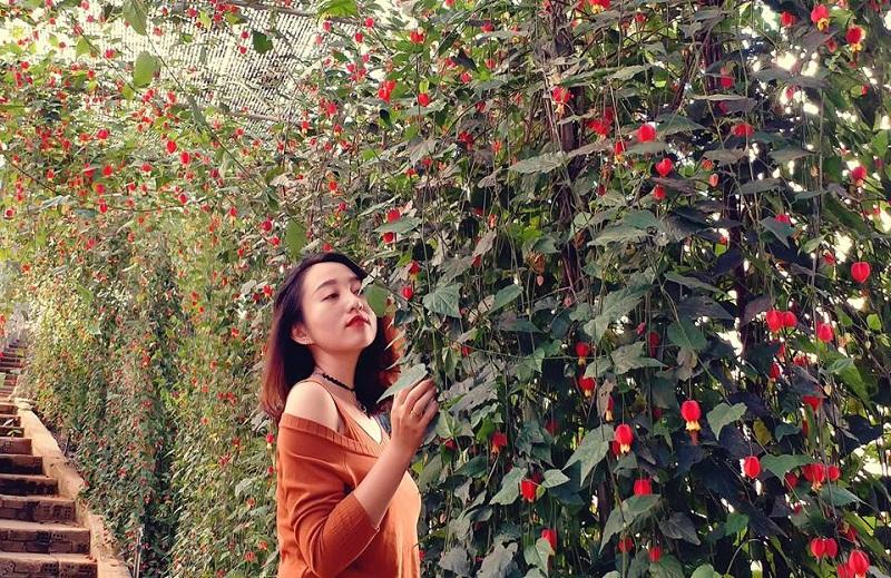 Lang Hoa Van Thanh Da Lat3jpg