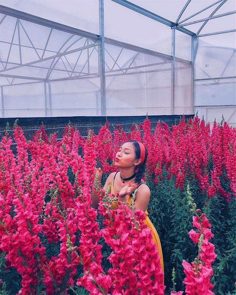 Lang Hoa Van Thanh O Dau