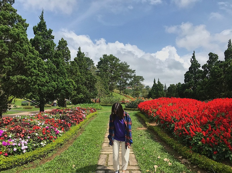Vuon Hoa Hong Da Lat
