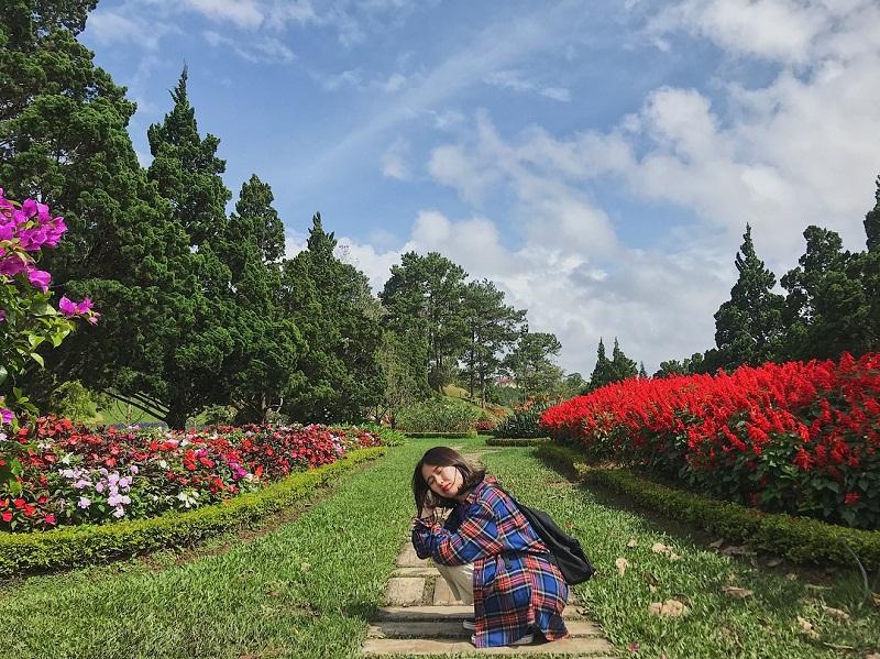 vườn hoa hông đà Lạt