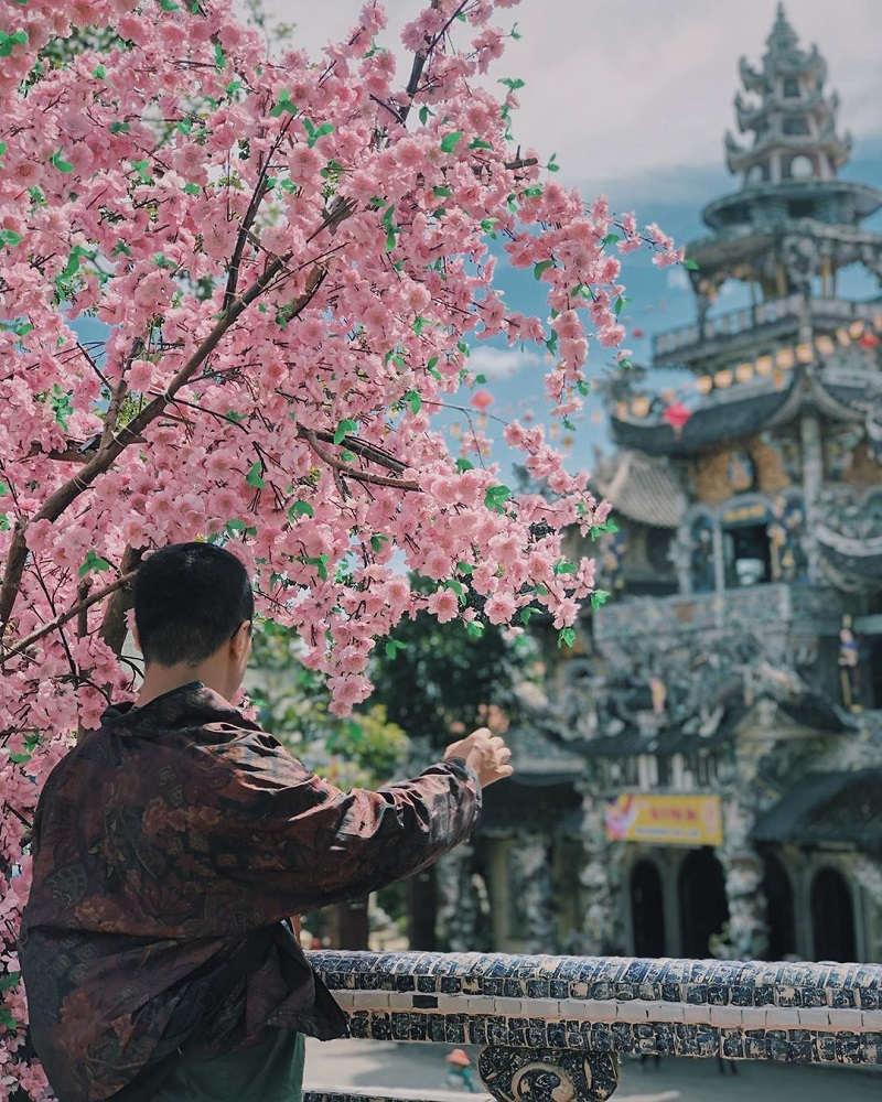 Hoa Son Dien Trang Da Lat 2